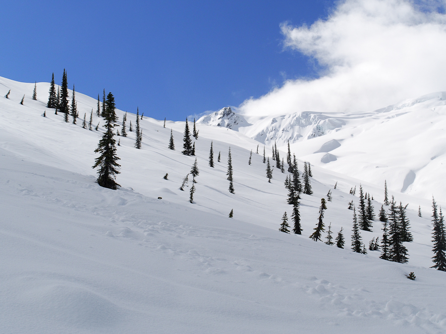 Rogers pass-25