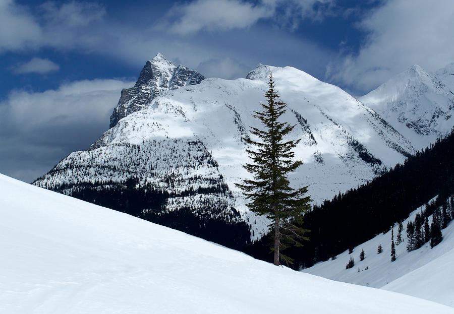 Rogers pass-3