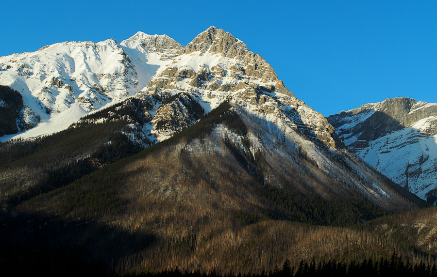 Rogers pass-49